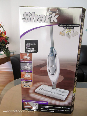 I gave in and bought a steam mop!