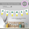 summer-mantel-pennant